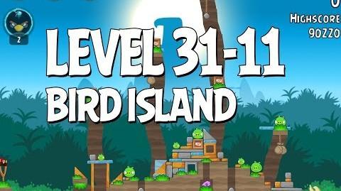 Bird Island 31-11