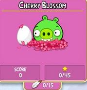 CherryBlossomOld
