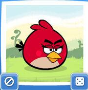 Female-Red-bird