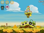 Piggy Farm-6