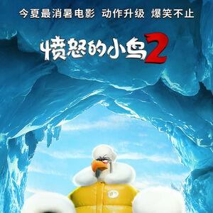 The Angry Birds Movie 2 Chinese Poster 2.jpg