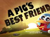 A Pig's Best Friend
