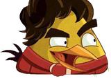 Senna Bird