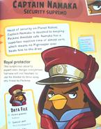 Captain Namaka