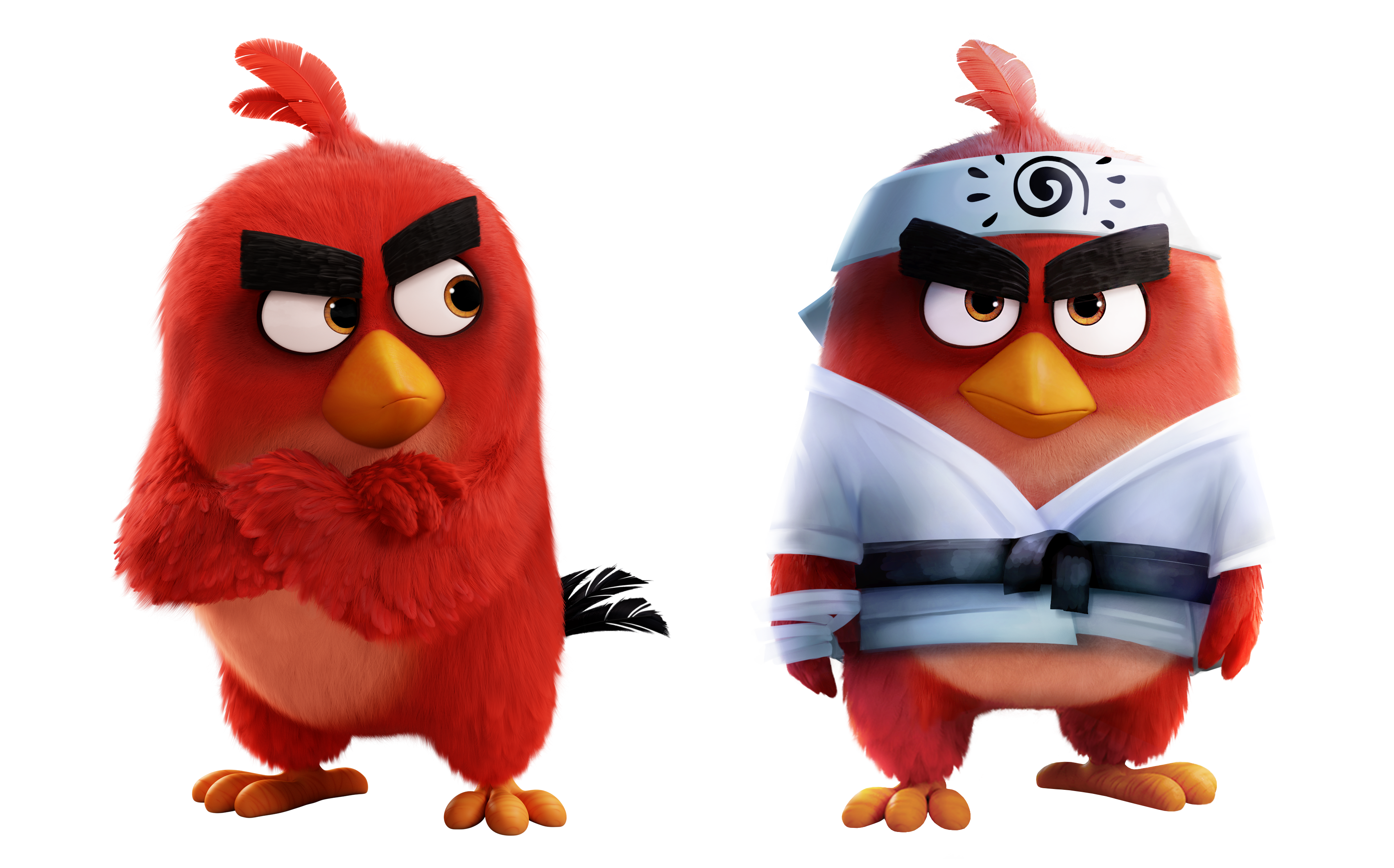Red Angry Birds Wiki Fandom