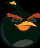BIRD GREY BLINK