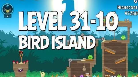 Bird Island 31-10
