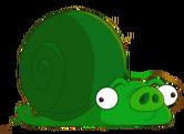 SnailPig.png