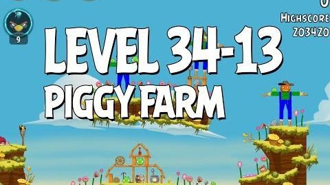 Piggy Farm 34-13