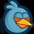 BIRD BLUE BLINK