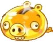 Golden Pig4