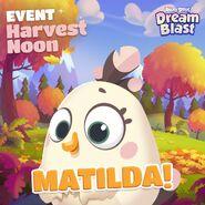 Dreamblastmatilda