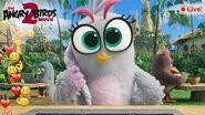 Angry Birds Movie 2 Live Stream Silver