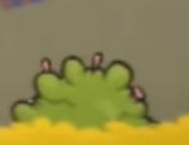 Cerdos de Hongo Arbusto