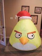 Chuck with Santa hat