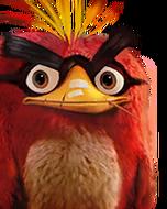 Flocker Red Portrait 006