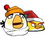 Birds winter