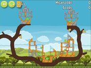 Angry Birds Pistachios Level 1-2