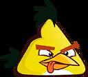 BIRD YELLOW COLLISION