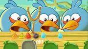 Синие в Angry Birds Fazer TV