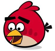 RedBirdSurprised