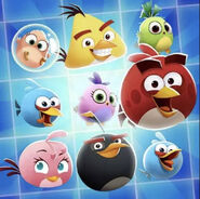 Angry Birds POP! Characters Icon