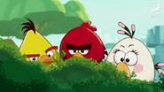-Egg Sounds Caught