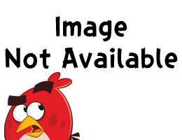 Image Not Avalible (New).png