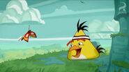 Angry-Birds-Toons-Butterfly-scene