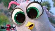 Angry Birds Movie 2 Meet The New Birds And Pigs Silver