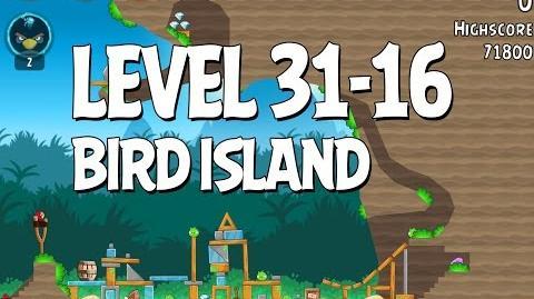 Bird Island 31-16