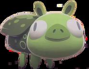 Cerdo Insecto