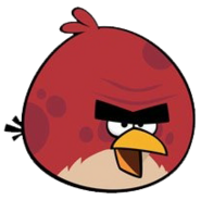 Terence squawk