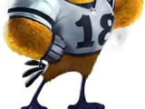 Star Quarterback