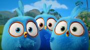 Angry-birds-blues-rovio.jpg