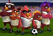 Angry Birds Goal (Birds Team)