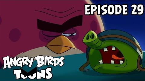 Angry Birds Toons Nighty Night Terence - S1 Ep29