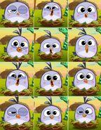 Hatchlings Emotions