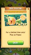 ABPop Poppy 3