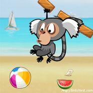 Angry-Birds-Rio-Avatar-Marmoset-Hanging