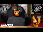 The Angry Birds Movie - The Flock Visits AMC Theaters