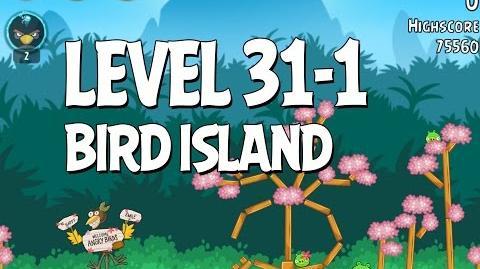 Bird Island 31-1