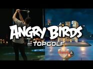 Angry Birds now at Topgolf!