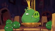 Pig Talent 5