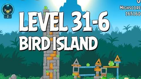Bird Island 31-6