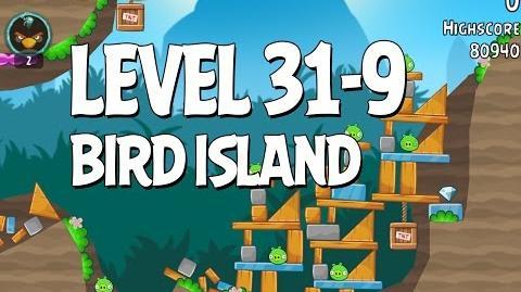Bird Island 31-9
