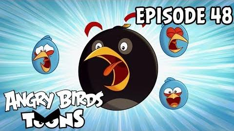 Angry Birds Toons Shrub It In - S1 Ep48
