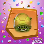 Cerdo Tortuga Promocional