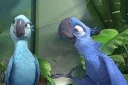 Jewel-and-blu-in-RIO