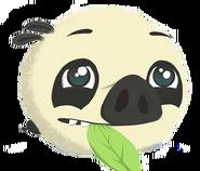 Cerdo Panda